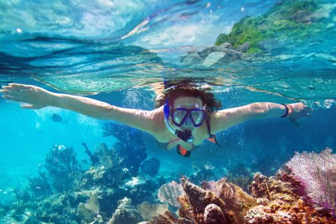 Diving, Snorkeling, Sri Lanka Beaches, Tavel and Tourism, Best place to visit in Sri Lanka, Sri Lanka, Tourism, Tourist attraction, Tourist attraction in Sri Lanka, Vogue Lanka Travels - Travel Agent in Sri Lanka - Tour Operator in Sri Lanka - Destination Manager in Sri Lanka
