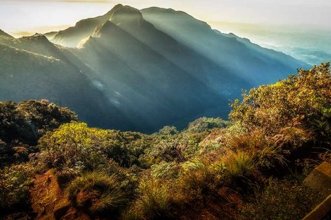 Horton Plains National Park - Tavel and Tourism, Best place to visit in Sri Lanka, Sri Lanka, Tourism, Tourist attraction, Tourist attraction in Sri Lanka, Vogue Lanka Travels - Travel Agent in Sri Lanka - Tour Operator in Sri Lanka - Destination Manager in Sri Lanka